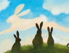 La Collina dei Conigli | Rizzoli | 2008