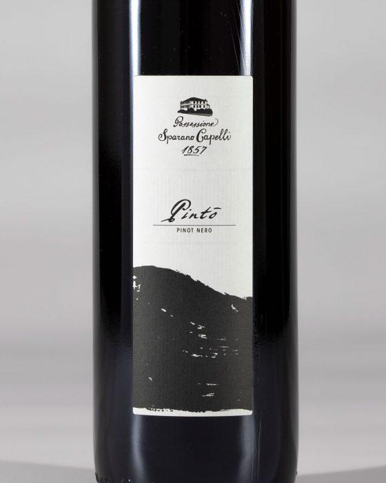 Pinto - winelabel - rebelot